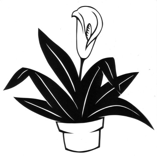 cut paper design Peace Lily